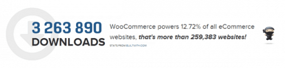 Why You Should Use WooCommerce